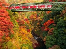 Japan Rail Pass Autumn