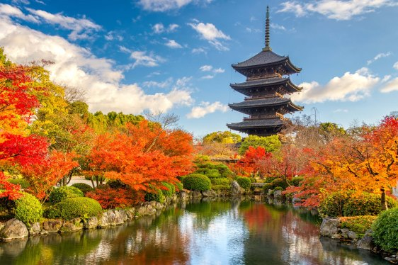 Japan, Kyoto Toji Pagoda