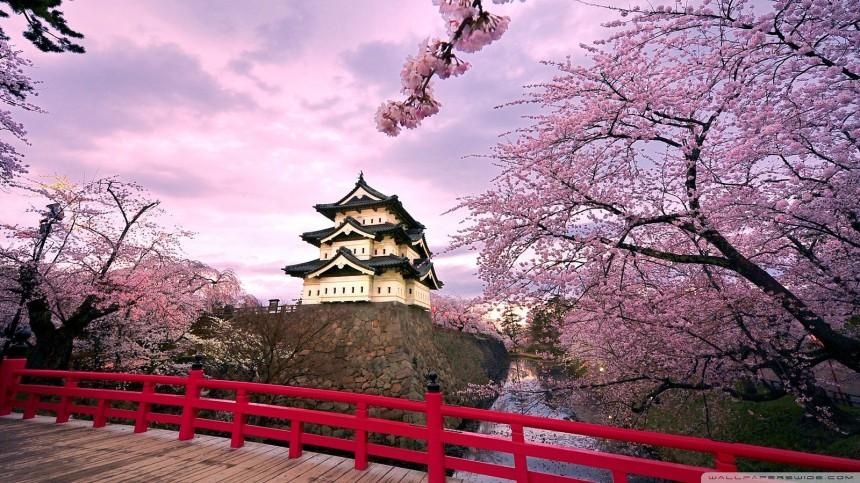 Spring in Tohoku