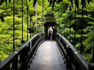 Takao-Hiking
