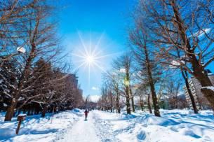 Hokkaido, Japan, Sapporo, City, Day
